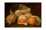 A Basket of Oranges  1895