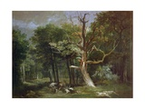 Wolf Hunt in the Forest of Saint-Germain  1748