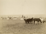 Indian Camp Blackfoot Reserve  Canada  1880-89