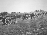 Battery D  2nd Us Artillery Federal Army in Action During the American Civil War (1861-65)