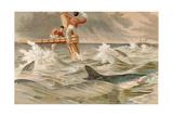 """Blue Shark  Plate from """"Brehms Tierleben: Allgemeine Kunde Des Tierreichs""""  Vol8  P438 …"""