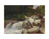 River Study  C1846-50