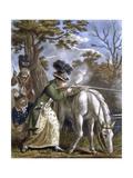 'The Ladies Shooting Poney'  1780