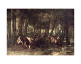 Spring  Stags Fighting  1861