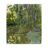 Weeping Willows  the Waterlily Pond at Giverny  C1918