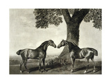 Two Hunters  Engraved by GT Stubbs (Bap1748-C1815)