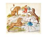 Gladiators Fighting with Animals