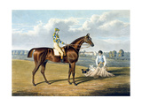 'Barefoot'  Winner of the St Leger  Engraved by Thomas Sutherland (1785-1838)  1823