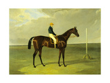 'sluggard' with Flatman Up  1832