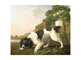 A Spaniel in a Landscape  1771