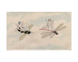Two Fairies Flying Through the Air  One Seated on a Bee and the Other on a Dragonfly  1817-29