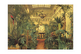 Winter Garden in the Winter Palace  St Petersburg  1840