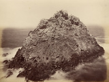 Sugar Loaf Island  Farallon National Wildlife Refuge  California  Usa  1869