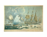 Northern Whale Fishery  Engraved by E Duncan  1829