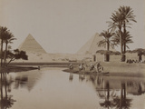 View of the Pyramids  Egypt  1893