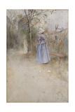 Autumn  1884