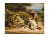 Feeding the Chicks  1862