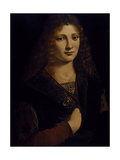 Portrait of a Young Man  Possibly Girolamo Casio  C1500