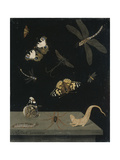 Scagolia Panel with Insects and a Salamander  1703