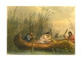 Gathering Wild Rice  1853