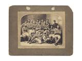 Auckland Touring Team  1883