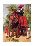 Lady Canning on an Elephant