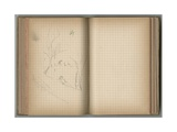 Landscape with Swan  from a Sketchbook  1885  1887-88
