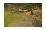 Haymaking  Stord  1889