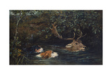 Gone to Water  1899