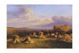 Harvest Scene  1876