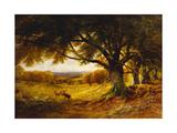 Spithead  Uppark  Sussex  1868