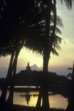 Giant Buddha Statue Seen Through Coconut Palms