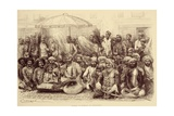Durbar of the Maharajah of Dholpur  1878