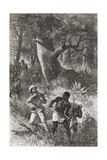 Stanley Threatens to Shoot a Porter During the Mutiny in Gombe  Africa  During His Expedition in…