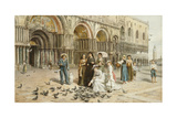 The Pigeons of St Mark's  Venice  Italy  1876