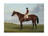 Mrs S Wrather's 'Nutwith'  with J Marson Up  1843
