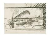 Zanzibar Harbour from the Consulate  1884