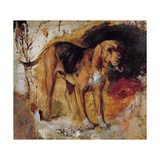 A Study of a Bloodhound  1848