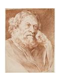 Head of a Bearded Man  Mid 18th Century