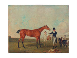 Shoveller Held by Her Trainer Will Chifney  1819