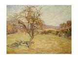 Landscape  1890