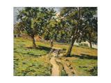 Path at Damiette  C1886