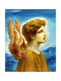 Angel Boy  1895