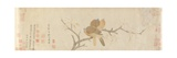 Doves and Pear Blossoms after Rain  Yuan Dynasty  Late 13th Century