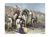 Caravan of Camels Resting on a Silk Route  Antioch