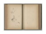 Ducks  from a Sketchbook  1885  1887-88