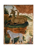 Deer and a Monkey  C1469-70