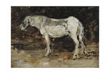 White Horse  C1885-90