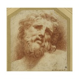 A Bearded Head  Looking Up (Possibly Laocoon)