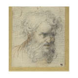 Study of a Bearded Head (Possibly for an Apostle)